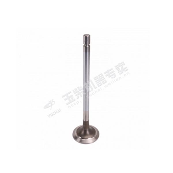 玉柴 TN100-1003103SF1 排气门